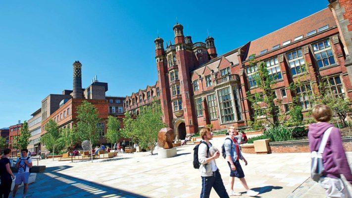 hoc bong du bi Newcastle University