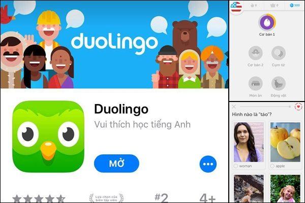 app hoc tieng anh Duolingo